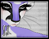 CK-Jaya-Whiskers