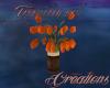 (T)Tulip Orange