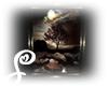 =S= Art Dark Moonlight