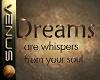 ~V~Dreams Wall Quote