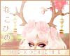 [HIME] Dara Antlers