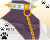[Pets]LeashCollar | sky