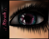 !R  Daybreak Eyes FUSION