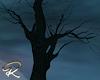 Dantes Tree