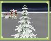 DCQ~ Fir with Snow