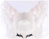Nyx | Ears 6