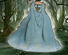 coat princess