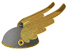Golden Wings Helmet