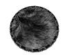 *g2p* rd black fur rug
