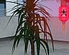 e wire pot plant