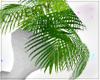 !Q! Potted Plant V4