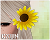Sunflower Hair L | F