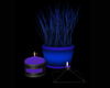 MIDNIGHT LOVE  CANDLES