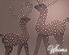 Reindeer Lights Derive