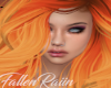 Danibue Pumpkin