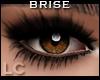 LC Brise Smokey Eyes v2