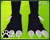 [Pets] Esme | feet