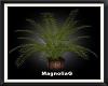 ~MG~ Wicker Palm Planter