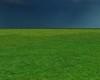 Grass Empty room
