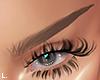 ʟ. brows bleached