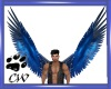 CW Blue Wings