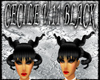 [FCS] Cecile V11 Black