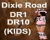 (KIDS) Dixie Roads song