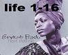 lifetime Erykah Badu