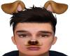 Snapchat puppy M