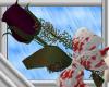 Purple Bloody Rose