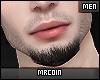 🔻Melfi Beard MH