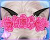 Oxu | Siamese Flowers V2