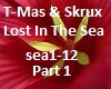 Music T-Mas & Skrux 1