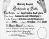 Custom Birth Certificate