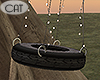 Riverside Tire Swing