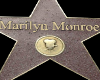 xFPx Marilyn Monroe Star
