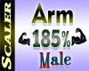 Arm Resizer 185%