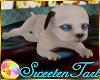 [ST]Puppy Pets-SKY #1