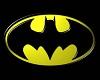THE BATMAN CAVE