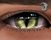 Feline Ivy Eyes M