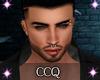 [CCQ]JasonV3-MHeads