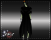 D- Wicked Witch Cloak