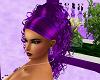 Curly Purple Ponytail