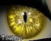 ~Tsu Gold Turbo Eyes