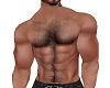 Muscle Torso w/Hair