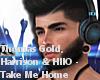 JV T.& H.- Take Me Home