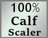 100% Scale Calf MA