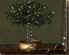 LIT FICUS TREE