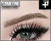 + sleek brows blonde