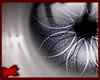 -A- Eve Eyes